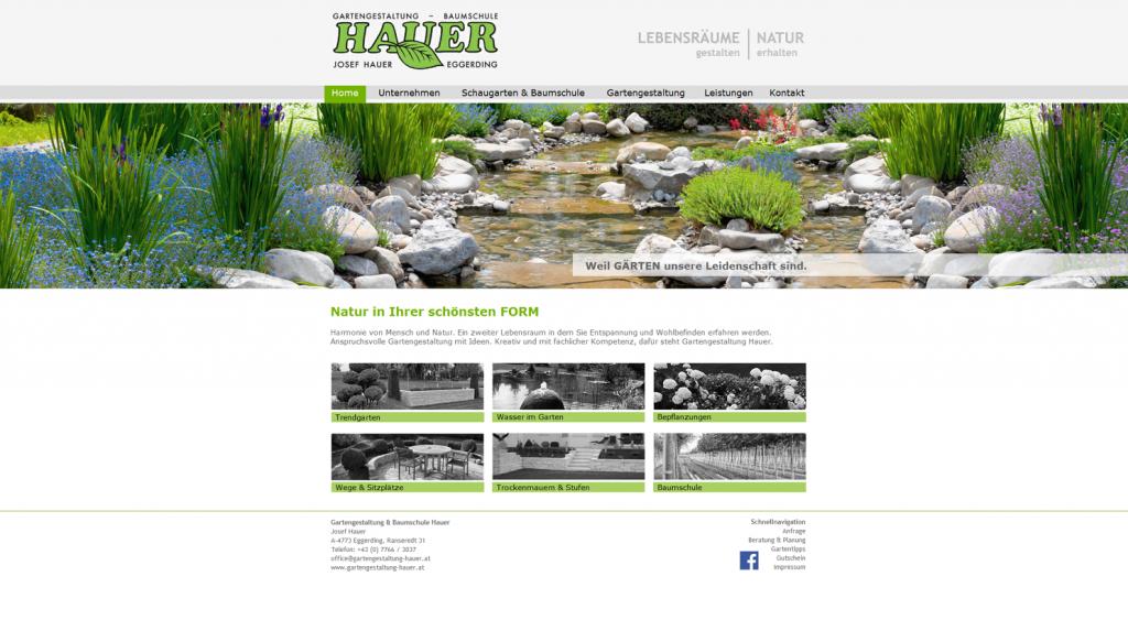 webdesign, Homepagedesign, 4910 Ried, Homepage Gestalten, Internetseite programmieren